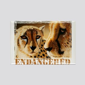 Endangered Cheetahs Rectangle Magnet