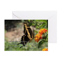 We are like butterflies.. ~ Cards (Pk of 10)