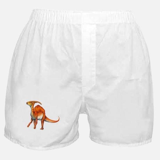 Parasaurolophus Jurassic Dinosaur Boxer Shorts