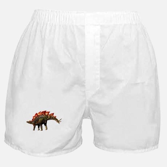 Stegosaurus Jurassic Dinosaur Boxer Shorts