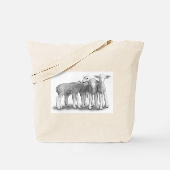Cute Baby lambs Tote Bag