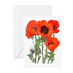 Red Poppies Greeting Cards (Pk of 10)