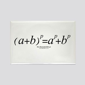 Binomial Law - Rectangle Magnet