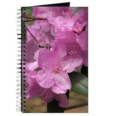 Azalea Journal
