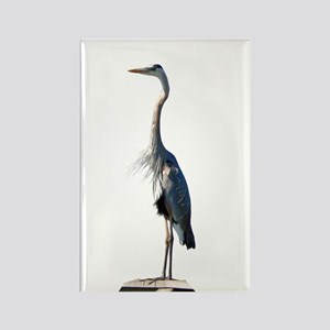 Great Blue Heron #2 Rectangle Magnet