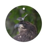 Harassed Eagle Ornament (Round)