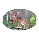Rescued Fawn Sticker