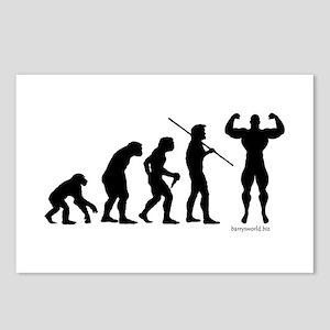Stud Evolution Postcards (Package of 8)