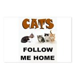 CATS Postcards (Package of 8)