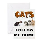 CATS Greeting Cards