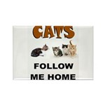 CATS Magnets