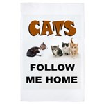 Cats 4' X 6' Rug