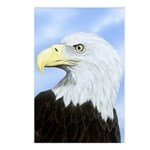 Spirit of Freedom: Postcards (Package of 8)