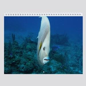 Underwater Images Wall Calendar