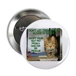 """""""Don't Let Them Suffer"""" 2.25"""" Button (100 pack)"""
