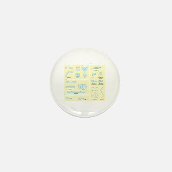 Morphology Mini Button