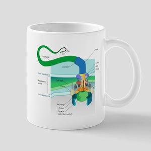 Morphology Mug