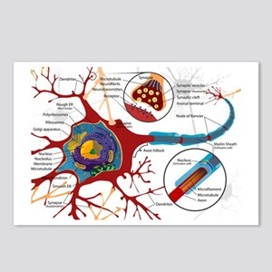 Neuron cell Postcards (Package of 8)