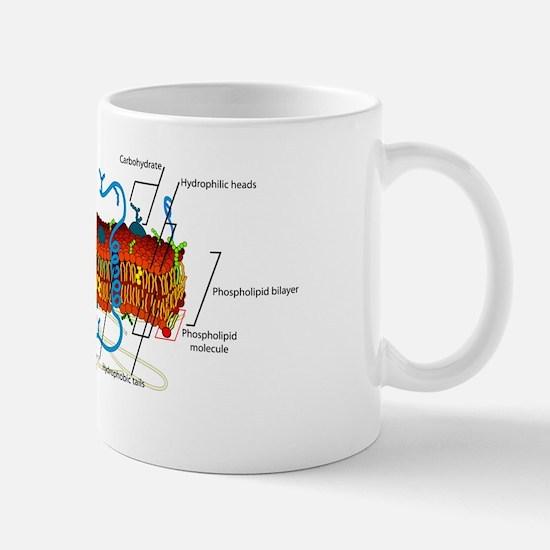 Cell Membrane Mug