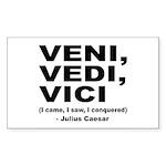 Veni Vedi Vici Caesar Quote Rectangle Sticker 10