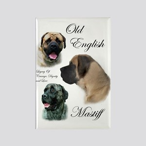 Old English Mastiff Rectangle Magnet (10 pack)