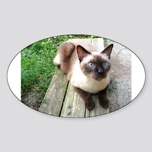Siamese Cat Bench Oval Sticker