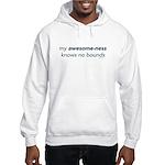 My Awesome-ness Blue Hooded Sweatshirt