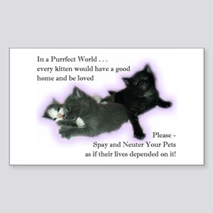 Spay Neuter Kittens Rectangle Sticker