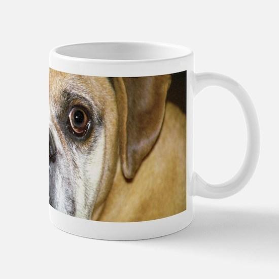Old Lick the Boxer Mug