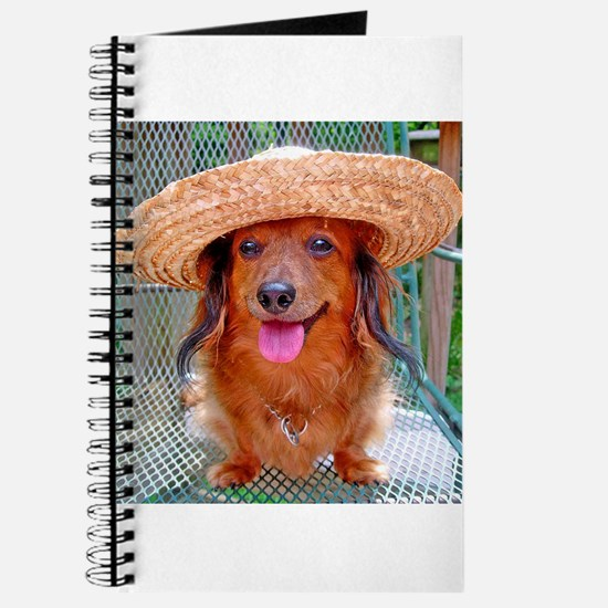 Vacation Doxie Journal