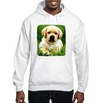 Yellow Labrador Puppy Hooded Sweatshirt
