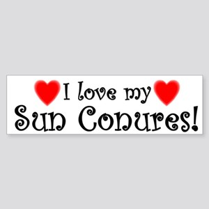 I Love my Sun Conures Bumper Sticker