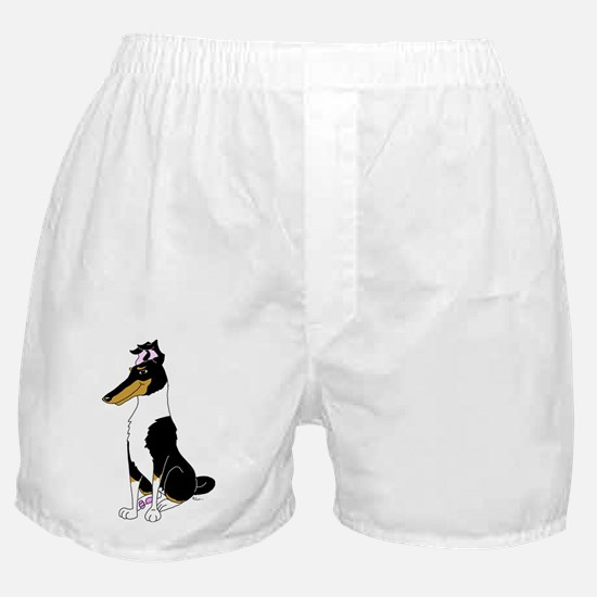Smooth Tricolor Collie Boxer Shorts