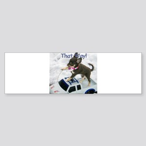 Chihuahua Trucker Bumper Sticker