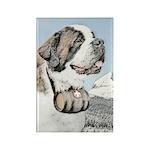 Saint Bernard Rectangle Magnet (100 pack)