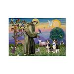 St Francis & 2 Tri Aussies Rectangle Magnet (10 pa