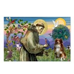 St Francis/ Aus Shep Postcards (Package of 8)