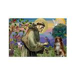 St Francis/ Aus Shep Rectangle Magnet
