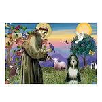 St. Francis & Beardie Postcards (Package of 8)