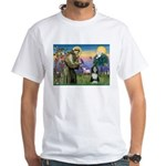 St. Francis & Beardie White T-Shirt