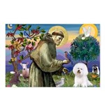 St Francis / Bichon Frise Postcards (Package of 8)