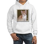 Sunkist Hooded Sweatshirt