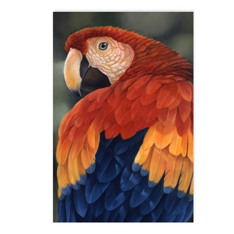 Tropical Cool Postcards (Package of 8)
