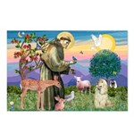 St Francis / Cocker (buff) Postcards (Package of 8