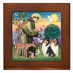 St Francis / Collie Pair Framed Tile
