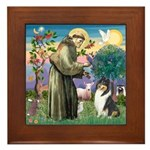St Francis / Collie Framed Tile