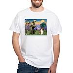 St Francis / Collie White T-Shirt
