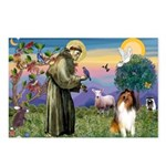 St. Francis & Collie Postcards (Package of 8)