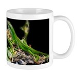 Anole at Night Mug