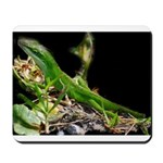 Anole at Night Mousepad